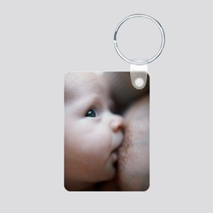 c0042536 Aluminum Photo Keychain