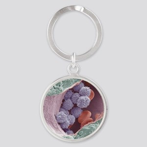 Bone marrow, SEM Round Keychain
