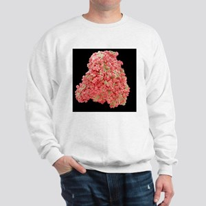 c0071251 Sweatshirt