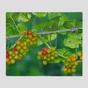 Black Bryony (Tamus communis) berrie Throw Blanket
