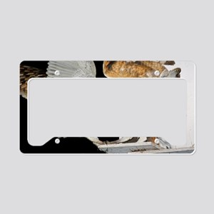 c0049525 License Plate Holder