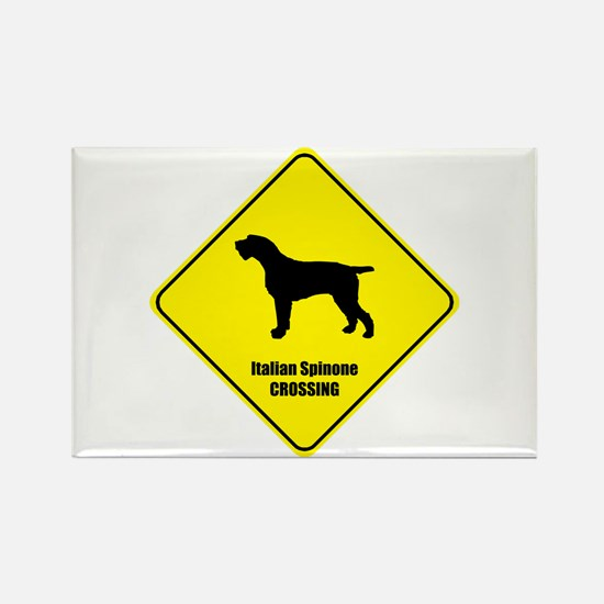 Spinone Crossing Rectangle Magnet