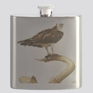 You did WHAT ?? Flask