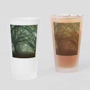 Ancient Beech woodland Drinking Glass