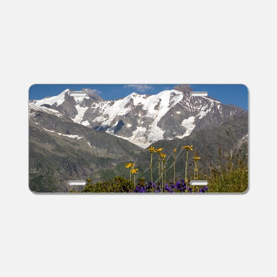 Arnica montana and Mont Bla Aluminum License Plate