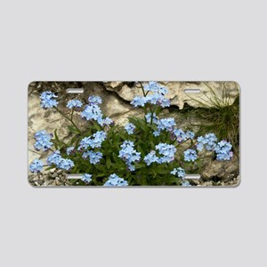 Alpine Forget-me-not (Myoso Aluminum License Plate
