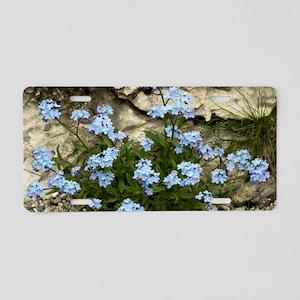 Alpine Forget-me-not (Myoso Aluminum License Plate