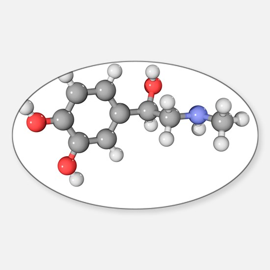 Adrenaline hormone molecule Sticker (Oval)