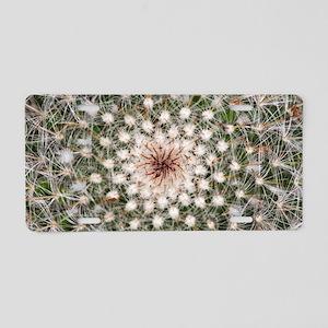Cactus spines (Mammillaria  Aluminum License Plate