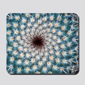 Cactus spines Mousepad