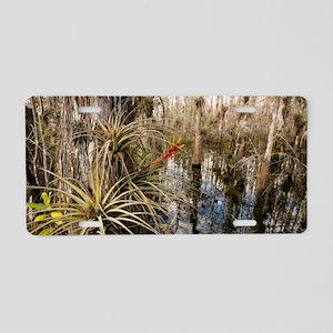 Bromeliad (Tillandsia fasci Aluminum License Plate