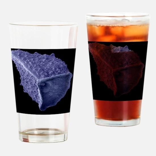 Borage seed, SEM Drinking Glass