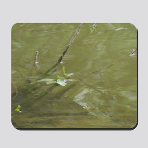 River Branches Mousepad