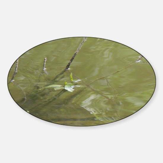 River Branches Sticker (Oval)