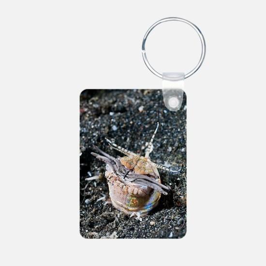 Bobbit worm Keychains