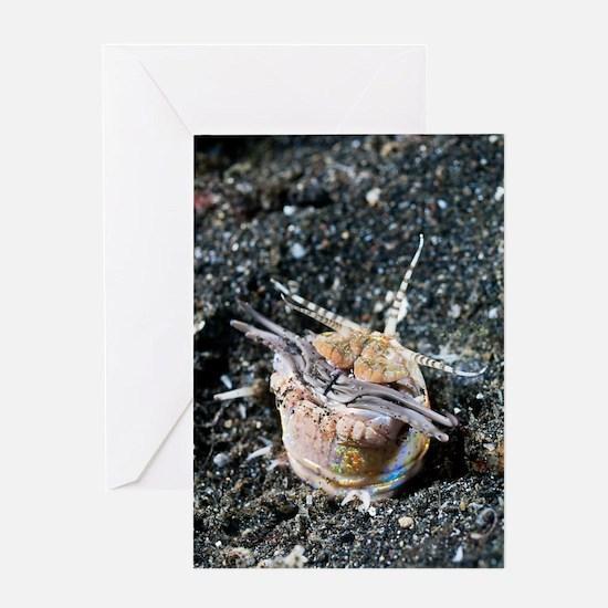 Bobbit worm Greeting Card