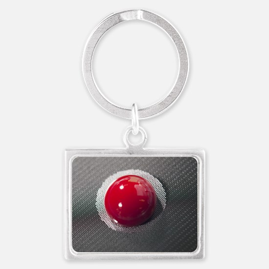 Blood on a cancer-detecting lab Landscape Keychain