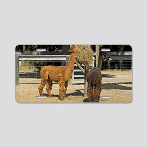 Alpacas Aluminum License Plate
