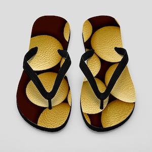 Black mustard seeds, SEM Flip Flops