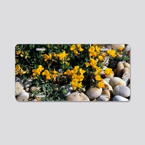 Bird's-foot trefoil Aluminum License Plate
