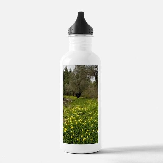 Bermuda buttercup (Oxa Sports Water Bottle