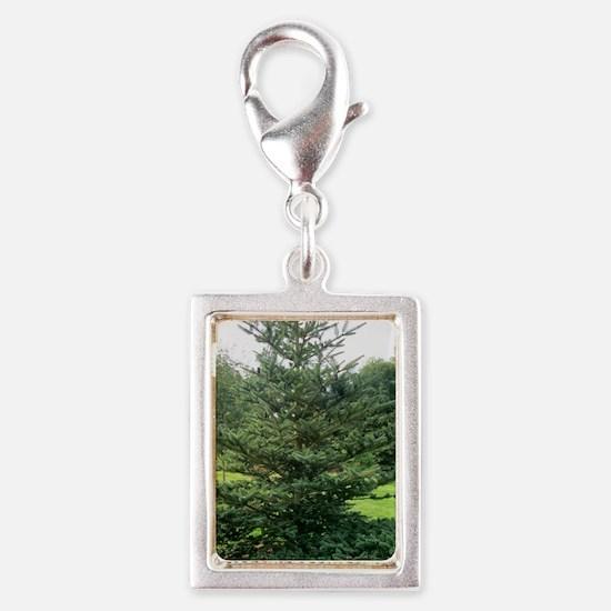 Bhutan fir (Abies densa) Silver Portrait Charm