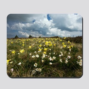 Anemone and Narcissus Mousepad