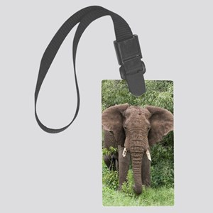 African elephant Large Luggage Tag