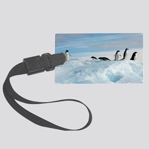 Adelie penguins Large Luggage Tag
