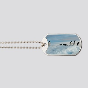 Adelie penguins Dog Tags