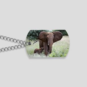 African elephants Dog Tags