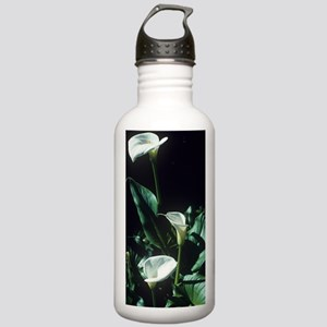 Arum lily flowers Stainless Water Bottle 1.0L