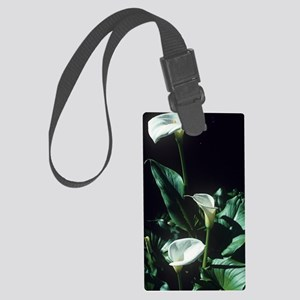 Arum lily flowers Large Luggage Tag
