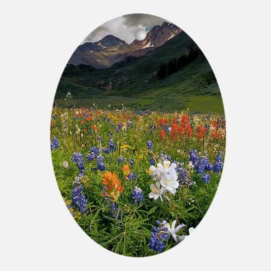 Alpine flowers in Rustler's Gulch Oval Ornament