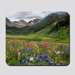 Alpine flowers in Rustler's Gulch Mousepad