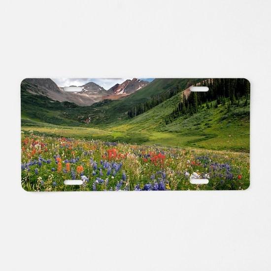Alpine flowers in Rustler's Aluminum License Plate