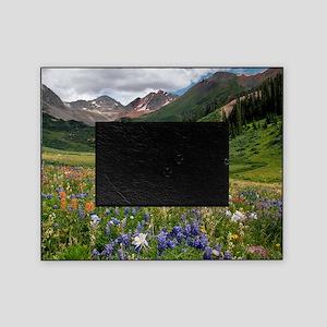Alpine flowers in Rustler's Gulch Picture Frame