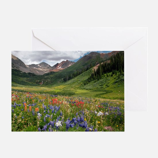 Alpine flowers in Rustler's Gulch Greeting Card