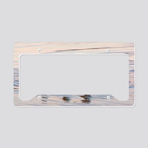 American White Pelicans License Plate Holder