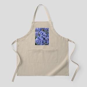Bluebells (Hyacinthoides hispanica) Apron