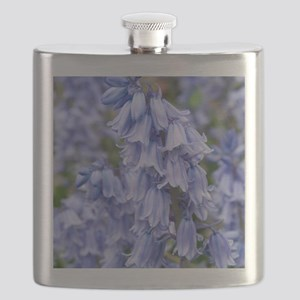 Bluebells (Hyacinthoides hispanica) Flask