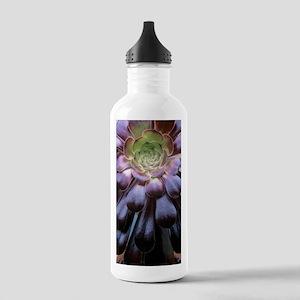 Aeonium arboreum Stainless Water Bottle 1.0L