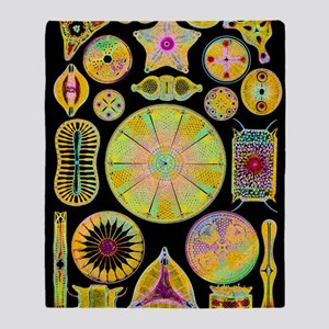 Art of diatom algae (from Ernst Haec Throw Blanket