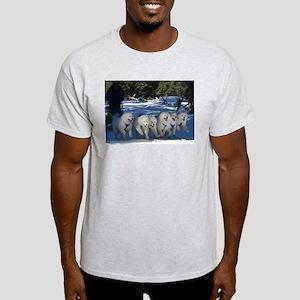 Shadow Fan T-Shirt