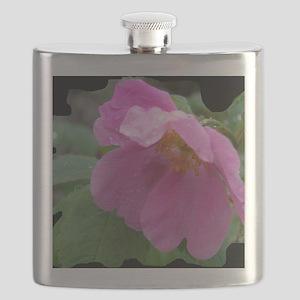 Alaska Wild Rose #01 Flask