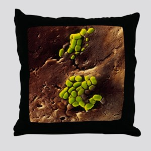 Bacteria on cooked roast beef Throw Pillow