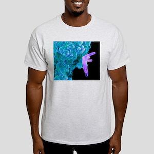 Bacteria infecting a macrophage, SEM Light T-Shirt