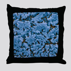 Bacillus subtilis bacteria, SEM Throw Pillow