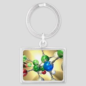 Adrenaline hormone molecule Landscape Keychain