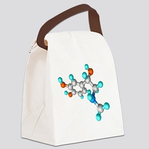 Adrenaline hormone molecule Canvas Lunch Bag